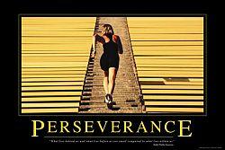 blogging-perseverance