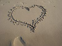love-your-blog