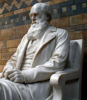 From Monkeys To Megabytes…How Darwin Can Enhance Your Blog